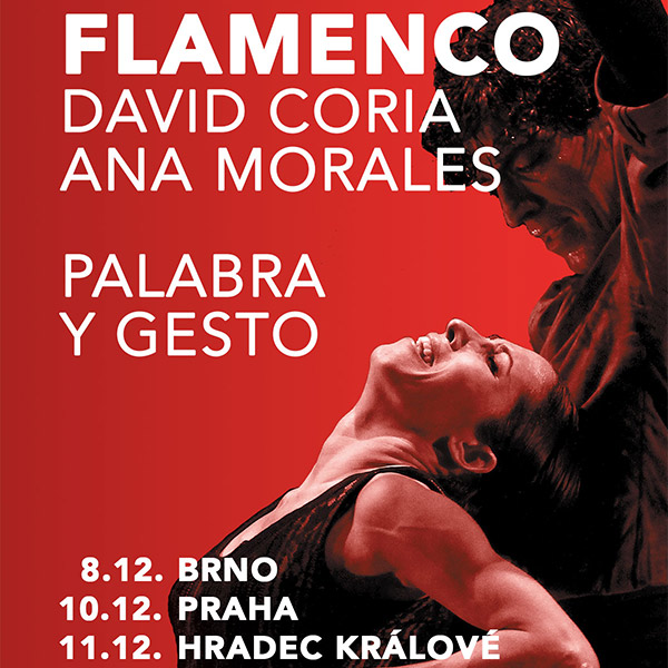 images/pepa/flamenco/1.jpg